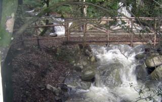 Ponticello lungo il sentiero Cascata del Campanaro