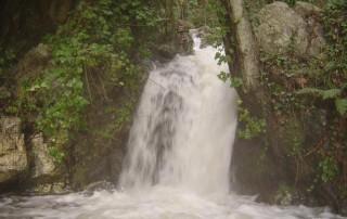 Vullu lungo il torrente Campanaro