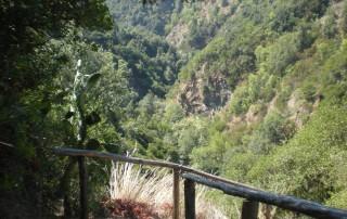 Sentiero Cascata delle Rupe