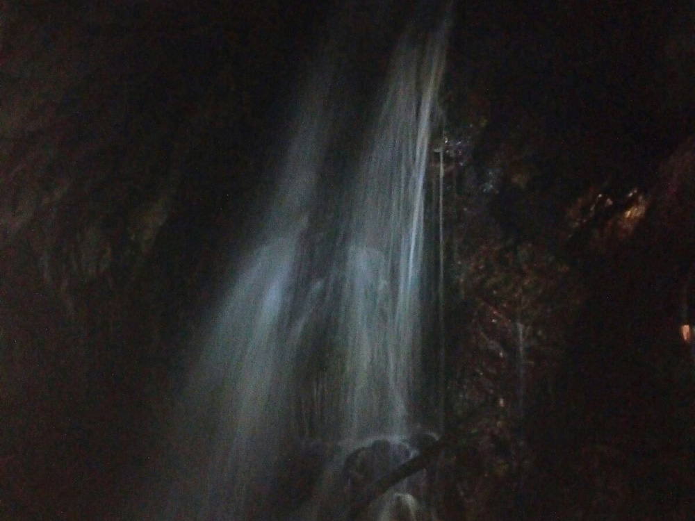 Escursioni in notturna nella Riserva
