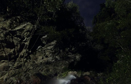 Escursioni in notturna nella Riserva delle Valli Cupe