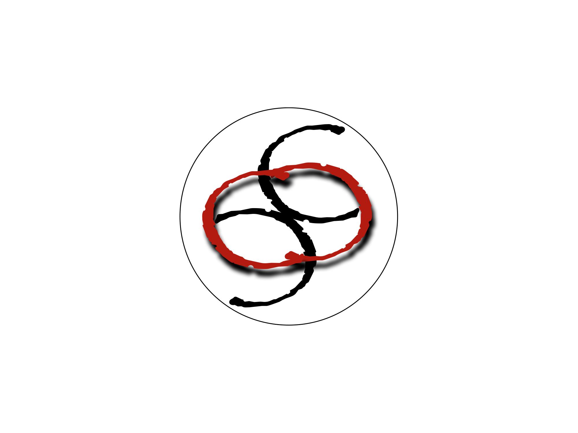 Logo dell'A.S.D. Colpo di coda